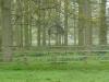 Woburn Deer Park EJC 028 (640x480)