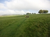 Beckford to Bredon Hill 017 (1024x768)