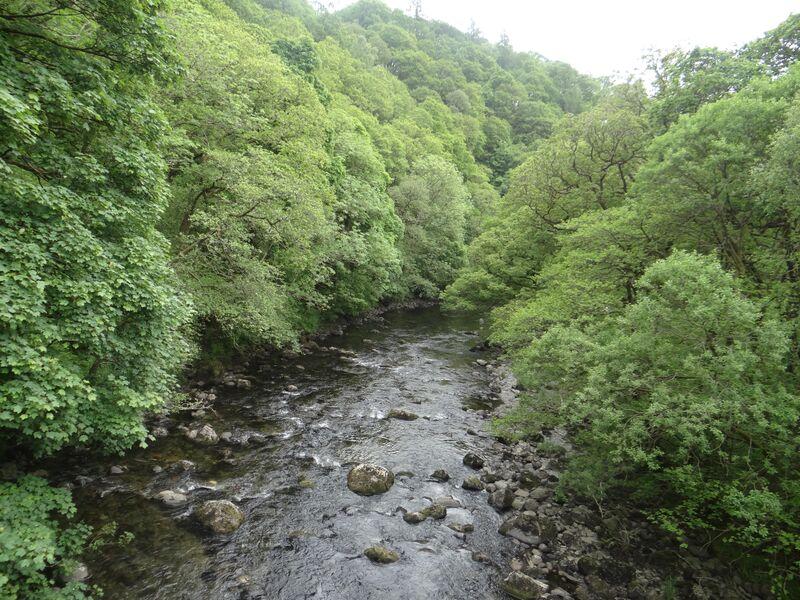 River Greta.jpg