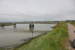 2015 Southwold to Walberswick Marsh
