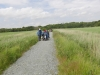 Southwold to Walberswick Marsh 073 (800x600).jpg