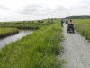 Southwold to Walberswick Marsh 081 (800x600).jpg