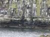 2016-07-12 Craster to Dunstanburgh Castle Golf Club 040 (1024x768)