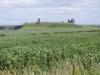 2016-07-12 Craster to Dunstanburgh Castle Golf Club 053 (1024x768)
