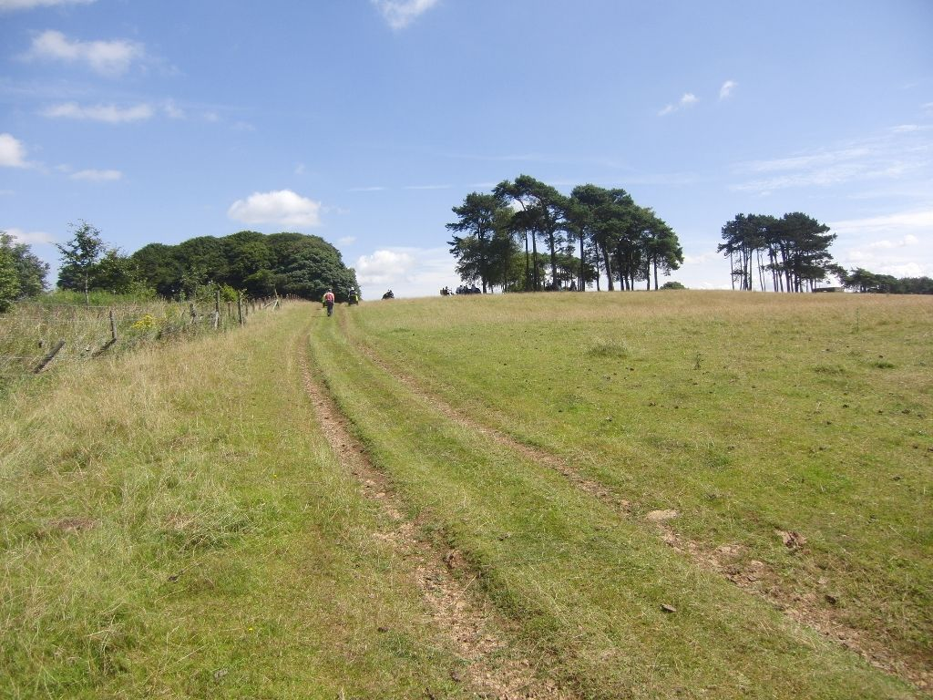 2016-07-22 Kemerton to Bredon Hill via Lalu Farm 039 (1024x768)