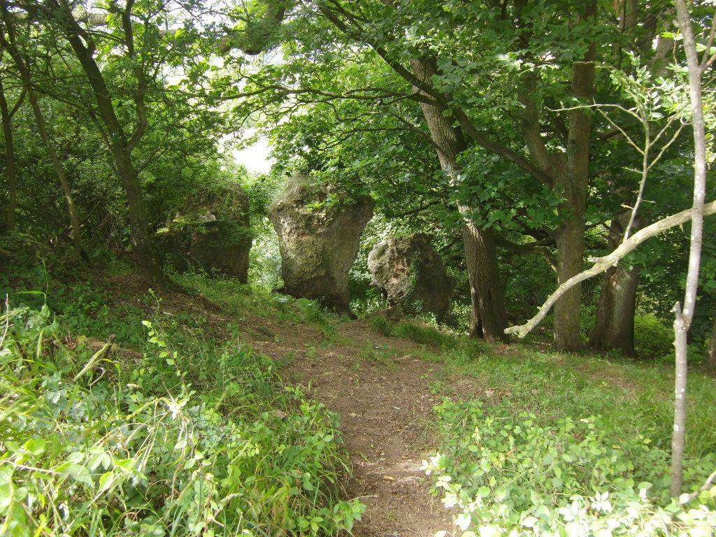 2016-07-25 Westmancote to Bredon's Norton 002 (1024x768)