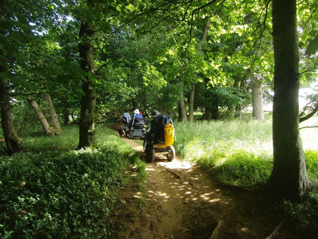 2016-07-25 Westmancote to Bredon's Norton 022 (1024x768)
