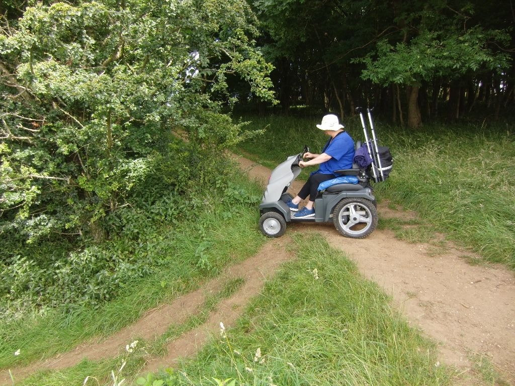 2016-07-25 Westmancote to Bredon's Norton 026 (1024x768)