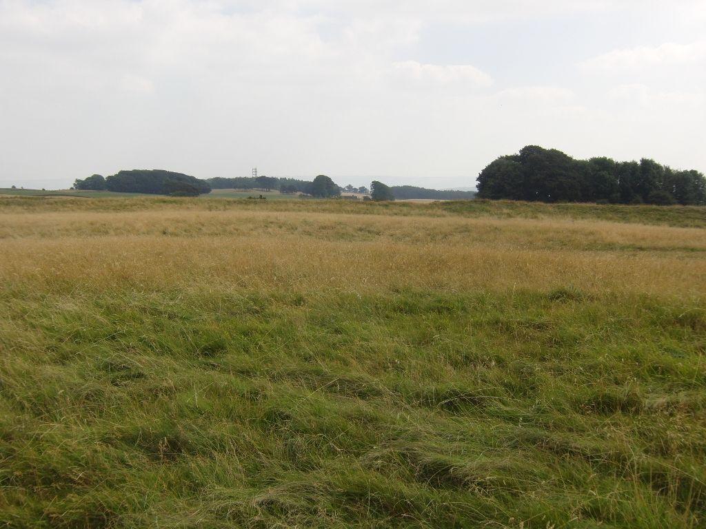 2016-08-17 Kemerton to Lalu Farm, Bredon Tower, Bells Castle 014 (1024x768)