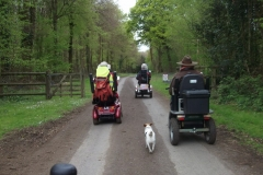 2017 Angmering Bluebell Ramble RR