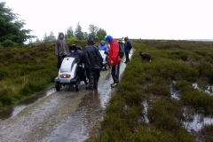 2017 Rievaulx Moor