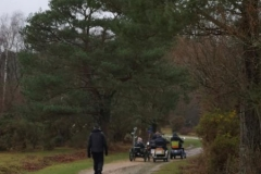 2019 Hatchet Pond to East Boldre Regional Ramble