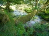 challacombe-07-challacombe-farm-brook