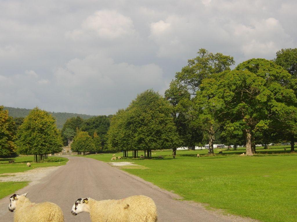 Chatsworth Estate 044 (1024x768)
