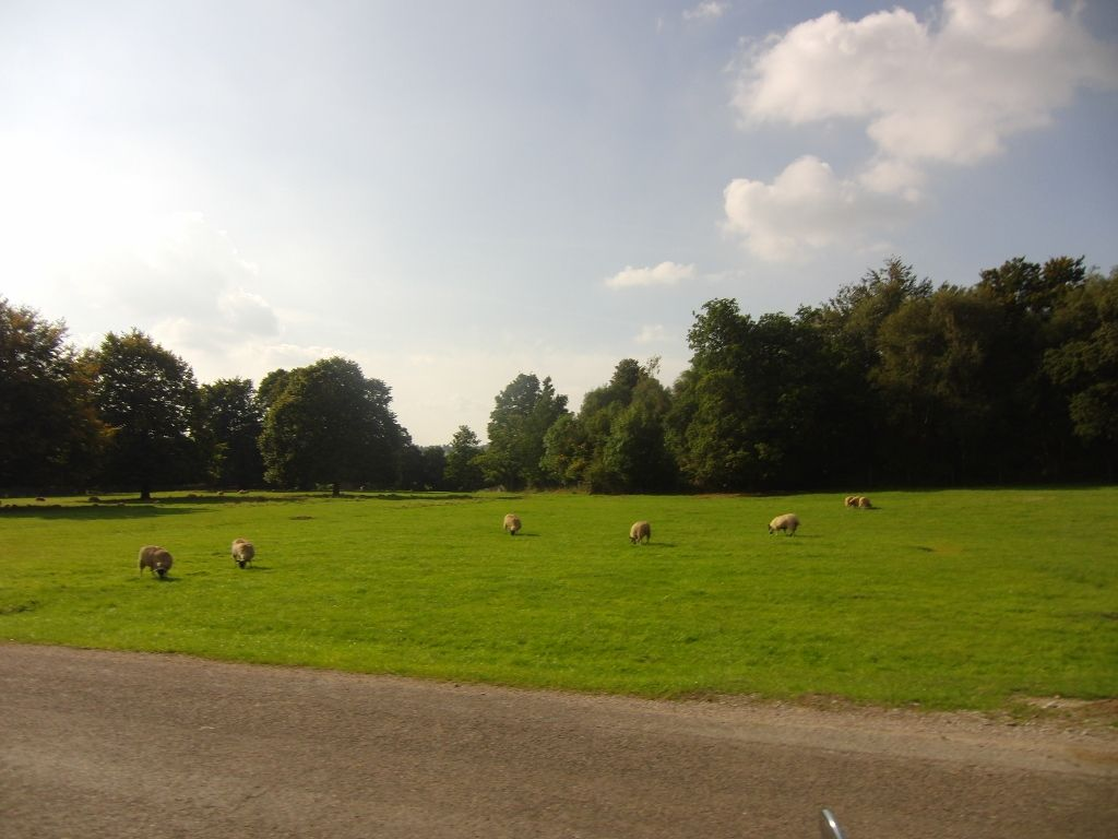 Chatsworth Estate 058 (1024x768)