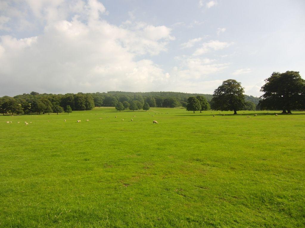 Chatsworth Estate 059 (1024x768)