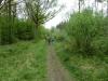 fineshade-woods-008-800x600