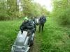 fineshade-woods-010-800x600