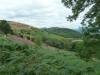 malvern-hills-ramble-041-1280x960
