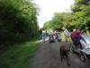 Monsal Trail 011 (1024x768)